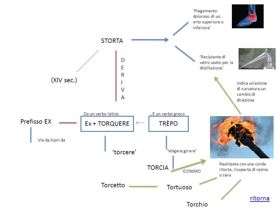 STORTA (XIV sec.) Piegamento doloroso di un arto superiore o inferiore Recipiente di vetro usato per la distillazione DERIVADERIVA Ex + TORQUERE Da un