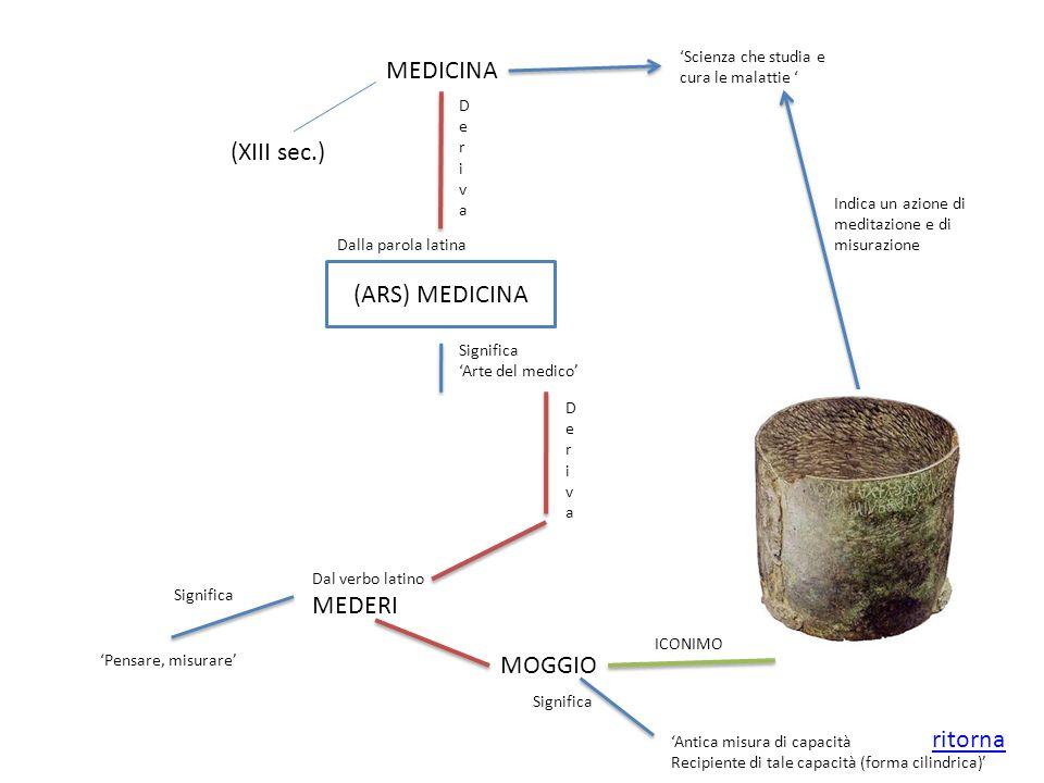 MEDICINA (XIII sec.) Scienza che studia e cura le malattie DerivaDeriva (ARS) MEDICINA Dalla parola latina Significa Arte del medico DerivaDeriva Dal