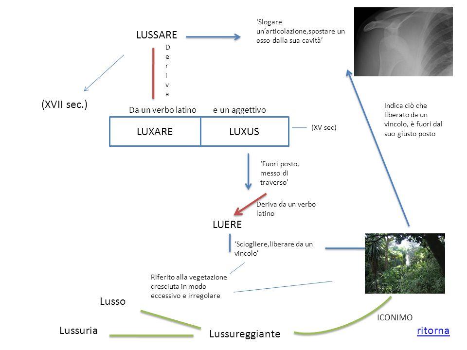 LUSSARE (XVII sec.) Slogare unarticolazione,spostare un osso dalla sua cavità LUXARELUXUS Da un verbo latino e un aggettivo (XV sec) Fuori posto, mess