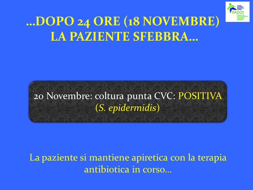 …DOPO 24 ORE (18 NOVEMBRE) LA PAZIENTE SFEBBRA… La paziente si mantiene apiretica con la terapia antibiotica in corso… 20 Novembre: coltura punta CVC: