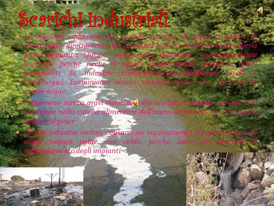 Le fogne cittadine spesso scaricano nei fiumi,nei laghi e nei mari la maggior parte delle loro acque inquinata da batteri e virus; esse sono quindi es