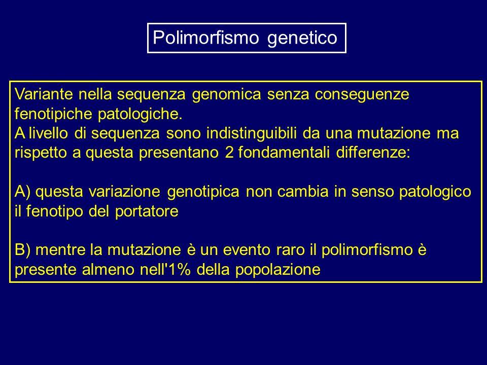 Variante nella sequenza genomica senza conseguenze fenotipiche patologiche. A livello di sequenza sono indistinguibili da una mutazione ma rispetto a