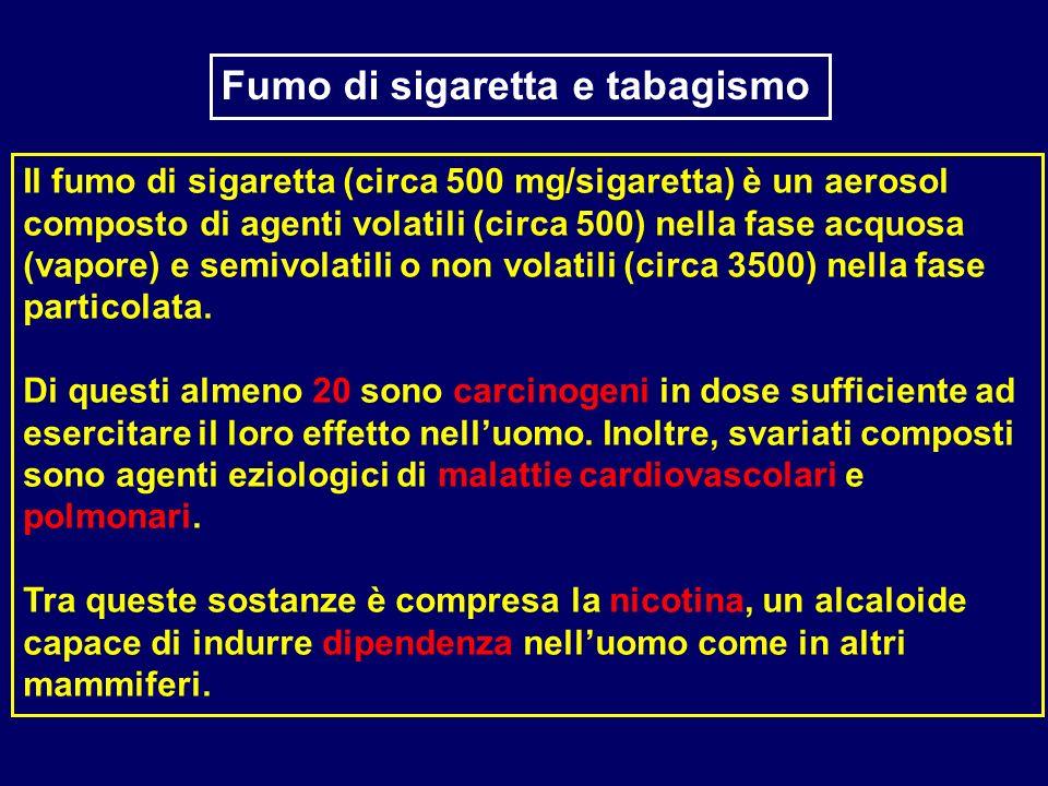 Il fumo di sigaretta (circa 500 mg/sigaretta) è un aerosol composto di agenti volatili (circa 500) nella fase acquosa (vapore) e semivolatili o non vo