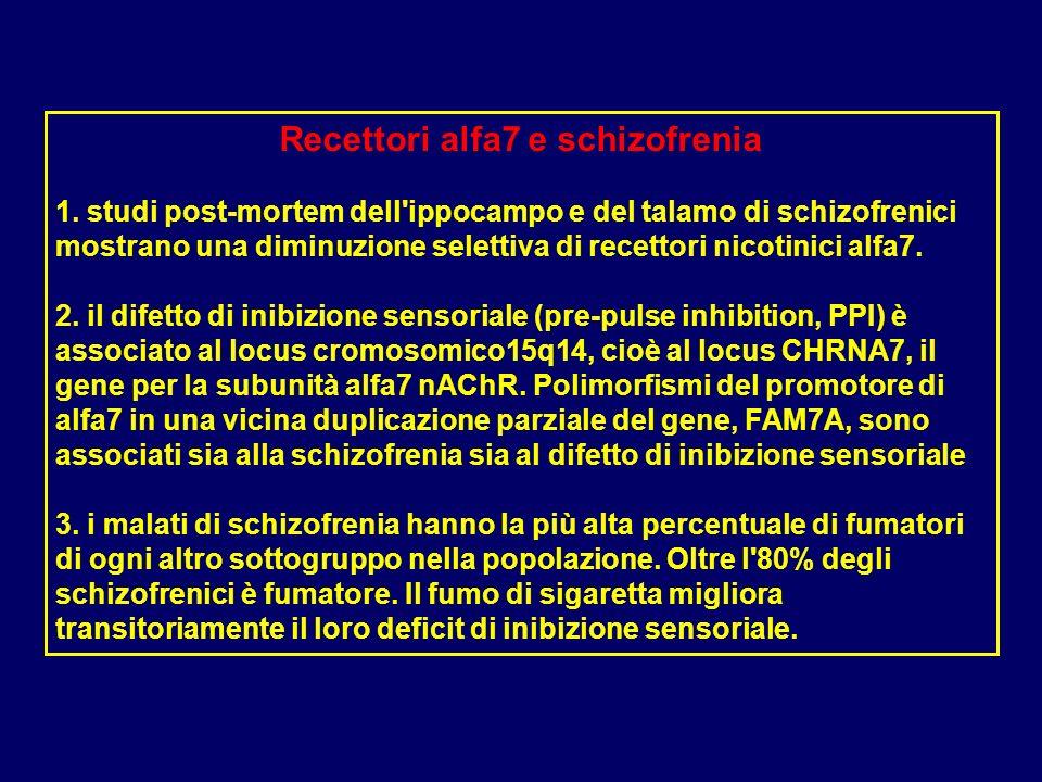 Recettori alfa7 e schizofrenia 1. studi post-mortem dell'ippocampo e del talamo di schizofrenici mostrano una diminuzione selettiva di recettori nicot