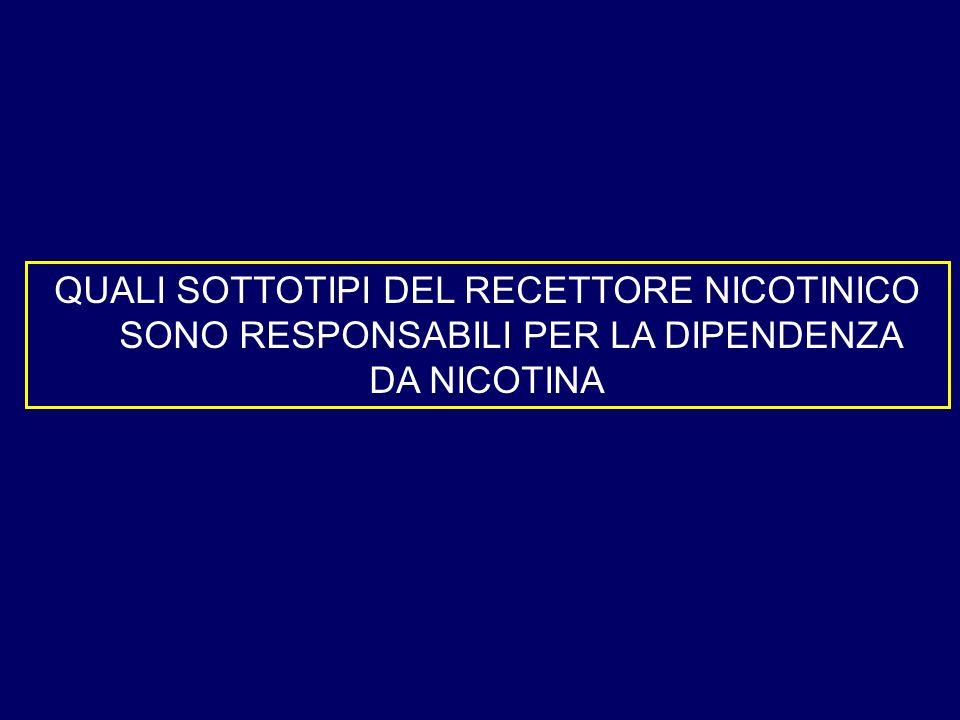 QUALI SOTTOTIPI DEL RECETTORE NICOTINICO SONO RESPONSABILI PER LA DIPENDENZA DA NICOTINA
