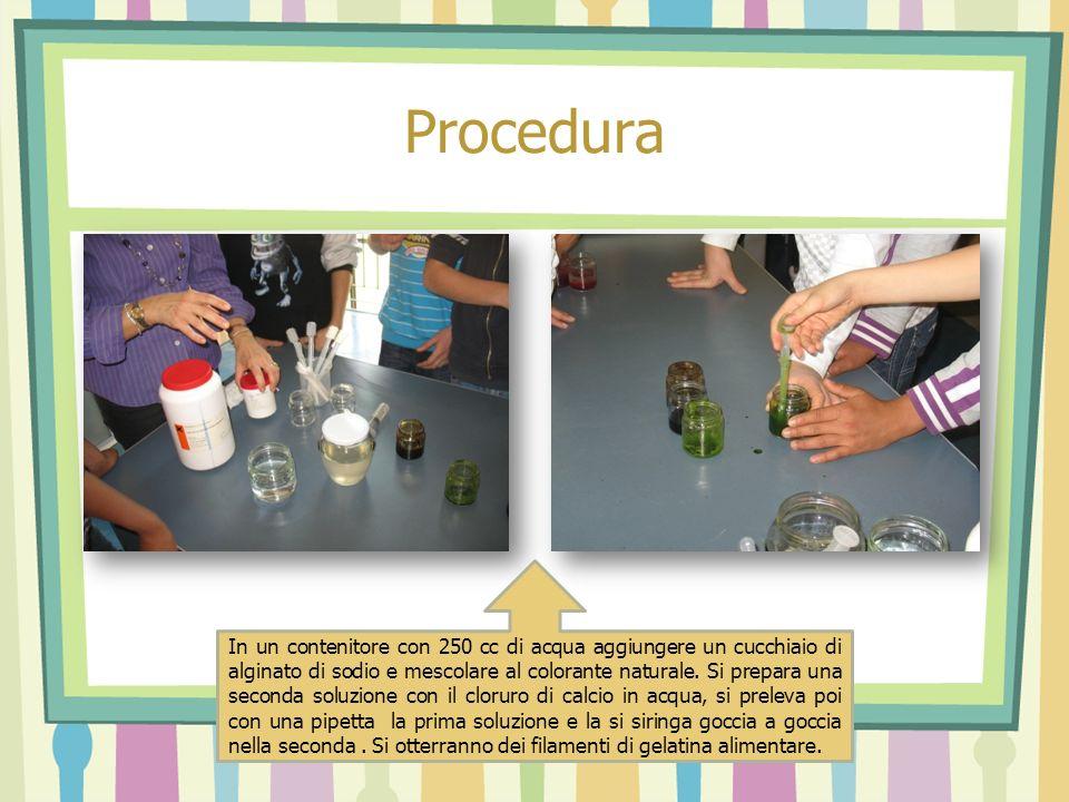 Procedura In un contenitore con 250 cc di acqua aggiungere un cucchiaio di alginato di sodio e mescolare al colorante naturale. Si prepara una seconda