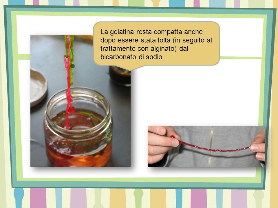 La gelatina resta compatta anche dopo essere stata tolta (in seguito al trattamento con alginato) dal bicarbonato di sodio.