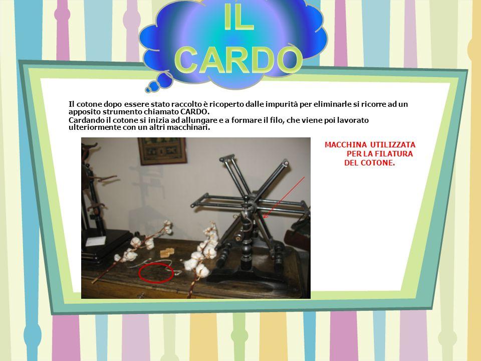 Il cotone dopo essere stato raccolto è ricoperto dalle impurità per eliminarle si ricorre ad un apposito strumento chiamato CARDO. Cardando il cotone