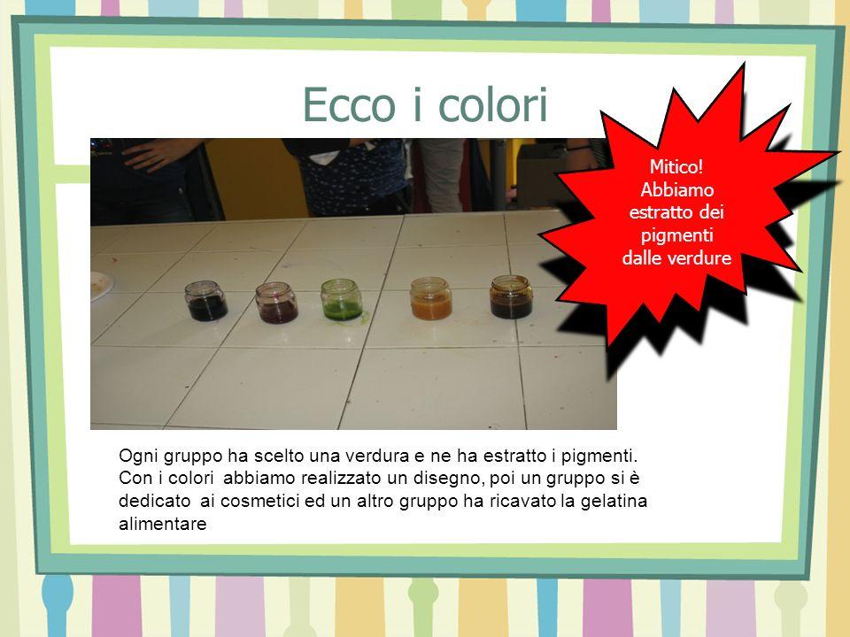 Mitico! Abbiamo estratto dei pigmenti dalle verdure Mitico! Abbiamo estratto dei pigmenti dalle verdure Ogni gruppo ha scelto una verdura e ne ha estr
