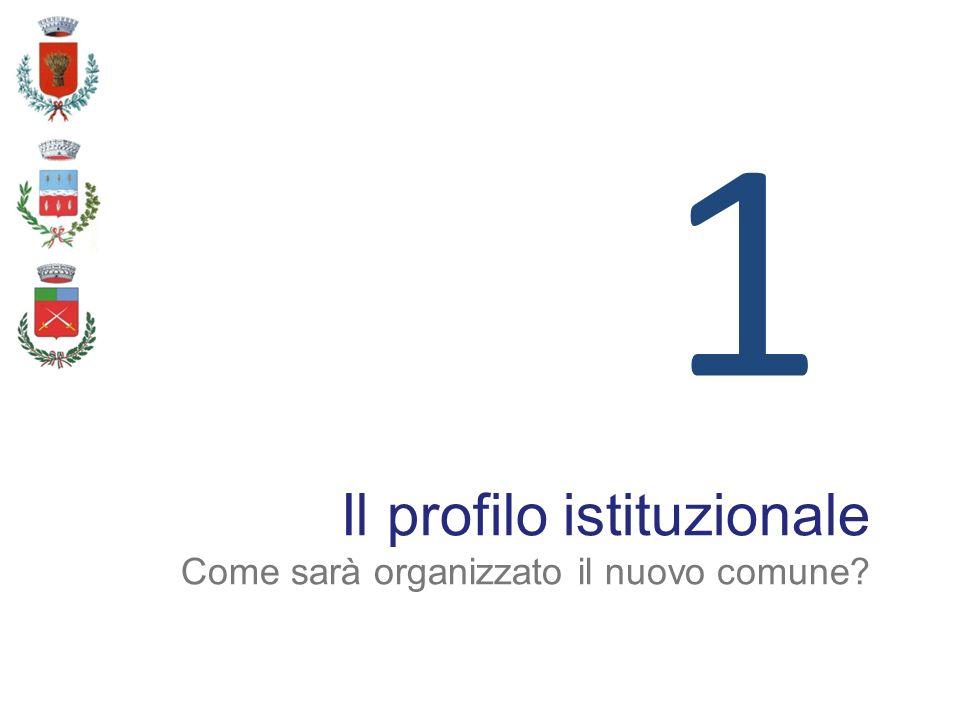1 Il profilo istituzionale Come sarà organizzato il nuovo comune