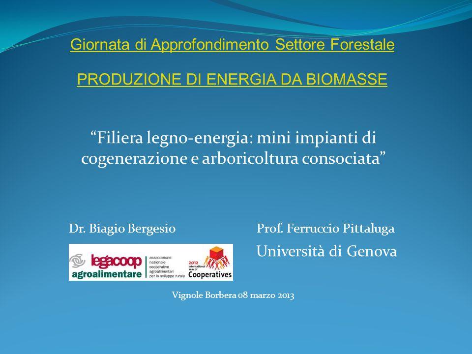 Filiera legno-energia: mini impianti di cogenerazione e arboricoltura consociata Dr. Biagio Bergesio Prof. Ferruccio Pittaluga Università di Genova Vi