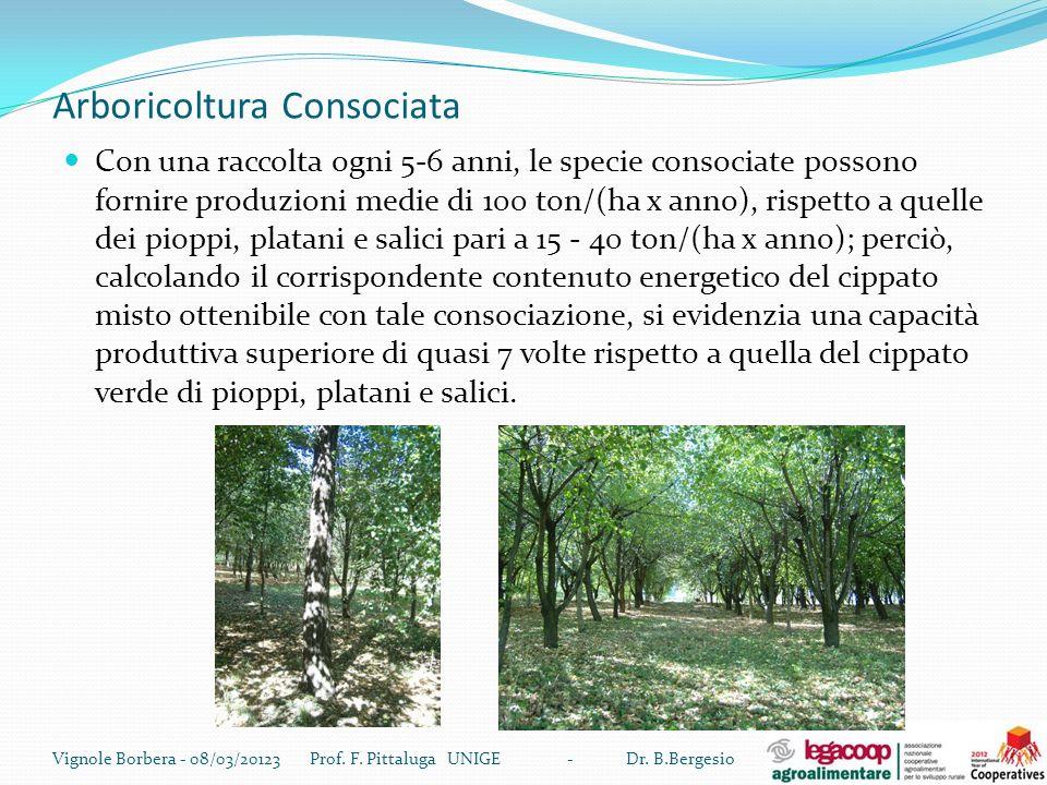 Arboricoltura Consociata Con una raccolta ogni 5-6 anni, le specie consociate possono fornire produzioni medie di 100 ton/(ha x anno), rispetto a quel