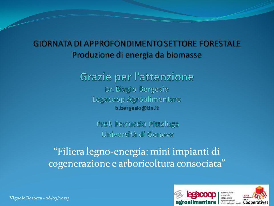 Filiera legno-energia: mini impianti di cogenerazione e arboricoltura consociata Vignole Borbera - 08/03/20123