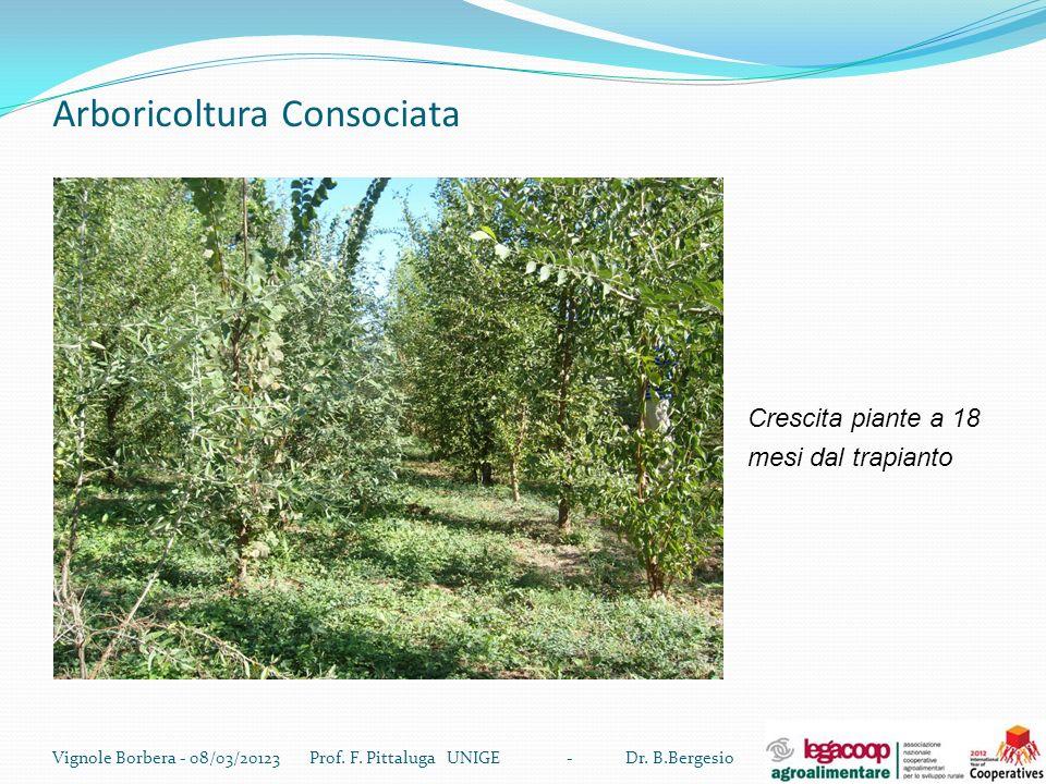 Arboricoltura Consociata Vignole Borbera - 08/03/20123 Prof. F. Pittaluga UNIGE - Dr. B.Bergesio Crescita piante a 18 mesi dal trapianto
