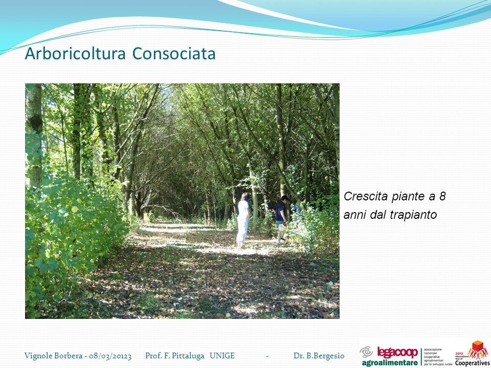 Arboricoltura Consociata Vignole Borbera - 08/03/20123 Prof. F. Pittaluga UNIGE - Dr. B.Bergesio Crescita piante a 8 anni dal trapianto