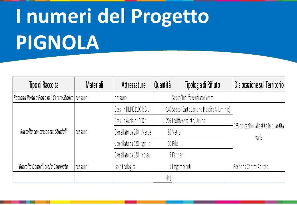 Loghi soggetti coinvolti I numeri del Progetto PIGNOLA