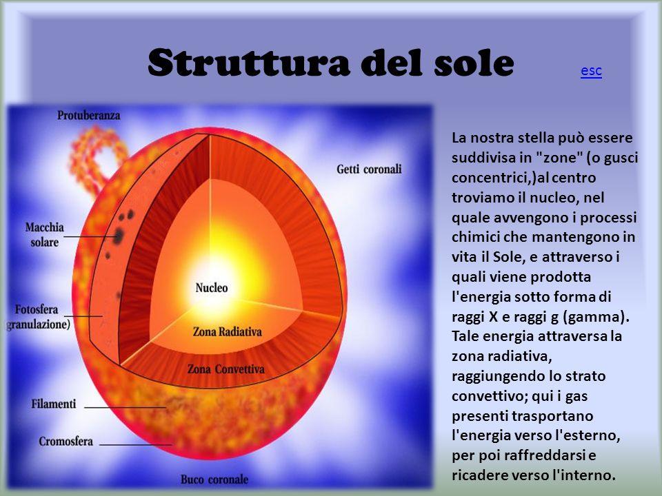 Struttura del sole La nostra stella può essere suddivisa in