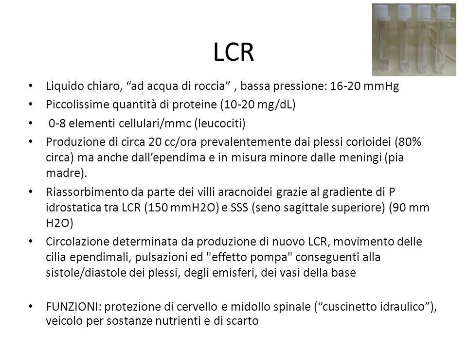 LCR Liquido chiaro, ad acqua di roccia, bassa pressione: 16-20 mmHg Piccolissime quantità di proteine (10-20 mg/dL) 0-8 elementi cellulari/mmc (leucoc