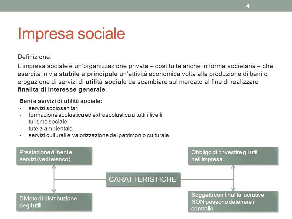 Impresa sociale Definizione: Limpresa sociale è unorganizzazione privata – costituita anche in forma societaria – che esercita in via stabile e princi