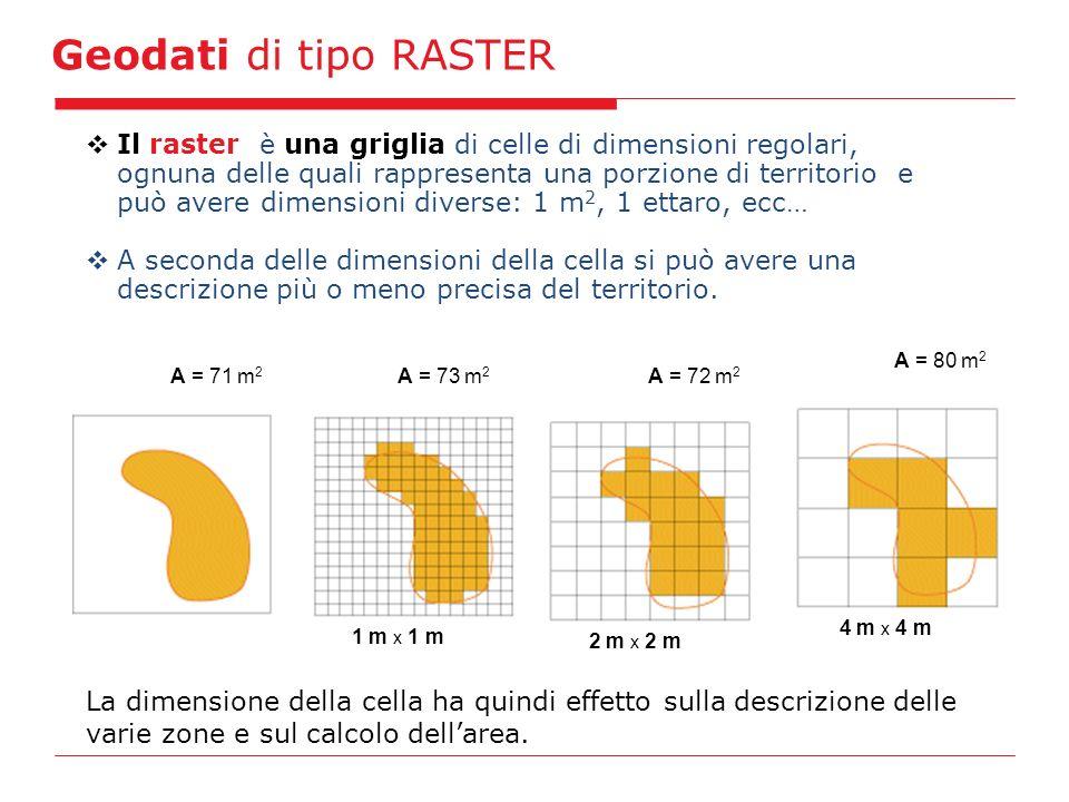 Geodati di tipo RASTER 1 m x 1 m A = 73 m 2 A = 71 m 2 2 m x 2 m A = 72 m 2 4 m x 4 m A = 80 m 2 Il raster è una griglia di celle di dimensioni regolari, ognuna delle quali rappresenta una porzione di territorio e può avere dimensioni diverse: 1 m 2, 1 ettaro, ecc… A seconda delle dimensioni della cella si può avere una descrizione più o meno precisa del territorio.