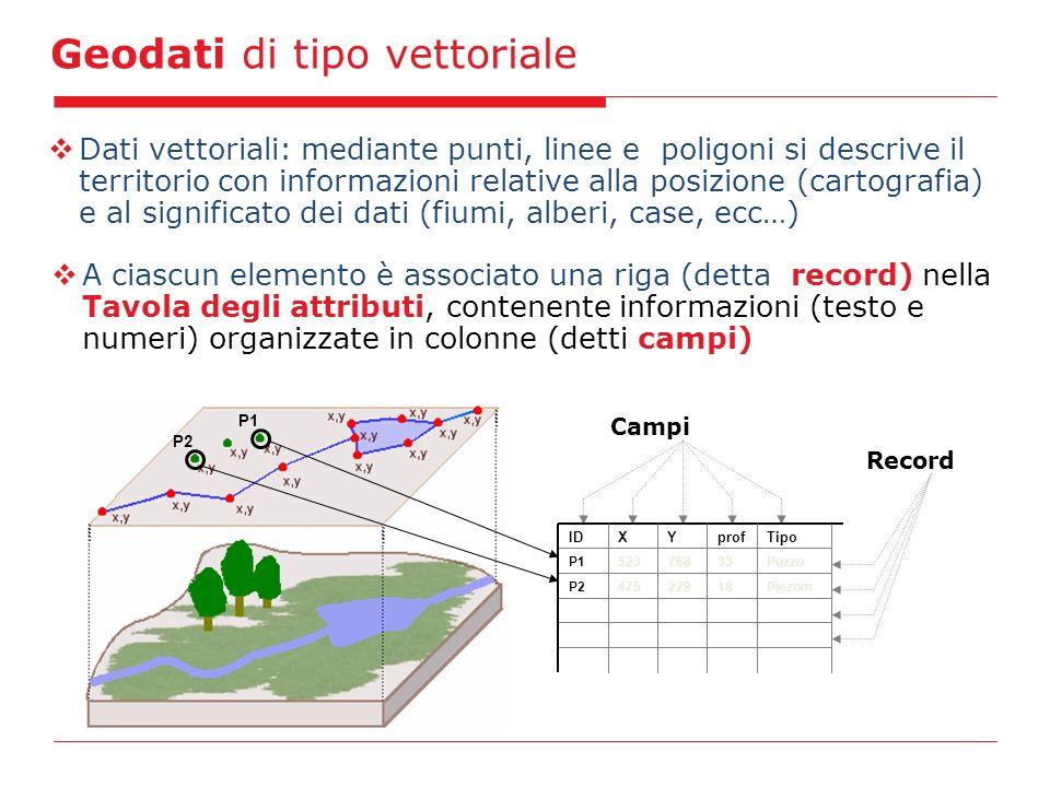 Geodati di tipo vettoriale Dati vettoriali: mediante punti, linee e poligoni si descrive il territorio con informazioni relative alla posizione (cartografia) e al significato dei dati (fiumi, alberi, case, ecc…) A ciascun elemento è associato una riga (detta record) nella Tavola degli attributi, contenente informazioni (testo e numeri) organizzate in colonne (detti campi) Campi Pozzo33P1523768 Record IDXYprofTipo P1 P2 Piezom18P2475229