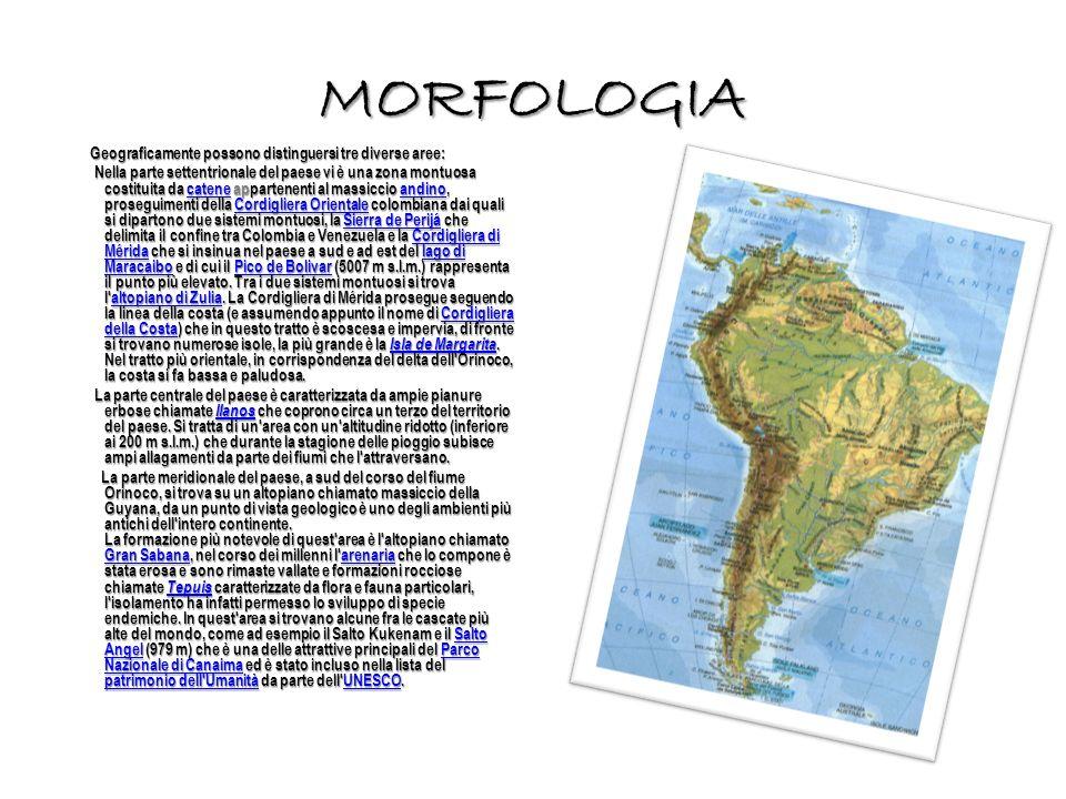 MORFOLOGIA Geograficamente possono distinguersi tre diverse aree: Geograficamente possono distinguersi tre diverse aree: Nella parte settentrionale del paese vi è una zona montuosa costituita da catene appartenenti al massiccio andino, proseguimenti della Cordigliera Orientale colombiana dai quali si dipartono due sistemi montuosi, la Sierra de Perijá che delimita il confine tra Colombia e Venezuela e la Cordigliera di Mérida che si insinua nel paese a sud e ad est del lago di Maracaibo e di cui il Pico de Bolivar (5007 m s.l.m.) rappresenta il punto più elevato.