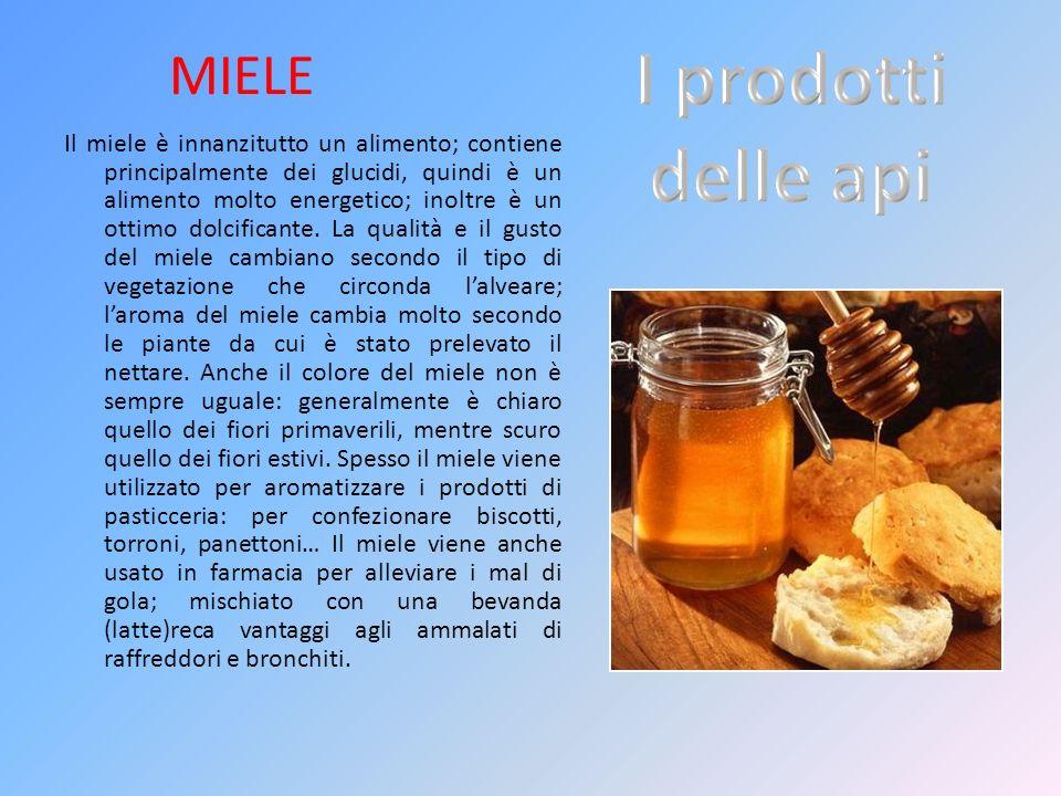 MIELE Il miele è innanzitutto un alimento; contiene principalmente dei glucidi, quindi è un alimento molto energetico; inoltre è un ottimo dolcificant