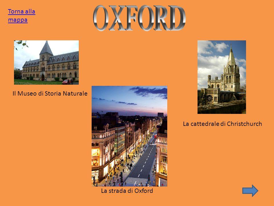 Il Museo di Storia Naturale La strada di Oxford La cattedrale di Christchurch Torna alla mappa