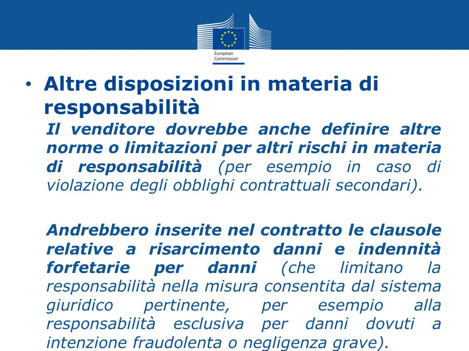 Altre disposizioni in materia di responsabilità Il venditore dovrebbe anche definire altre norme o limitazioni per altri rischi in materia di responsa