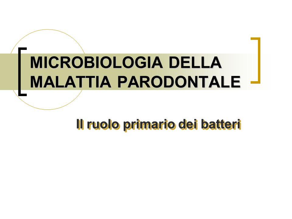 IL RUOLO PRIMARIO DEI BATTERI Possibilità di trasmissione Studi su animali hanno dimostrato che la malattia parodontale può essere trasmessa da un animale malato ad uno sano semplicemente trovandosi nella stessa gabbia o tramite inoculazione di placca o microorganismi specifici Possibilità di trasmissione Studi su animali hanno dimostrato che la malattia parodontale può essere trasmessa da un animale malato ad uno sano semplicemente trovandosi nella stessa gabbia o tramite inoculazione di placca o microorganismi specifici