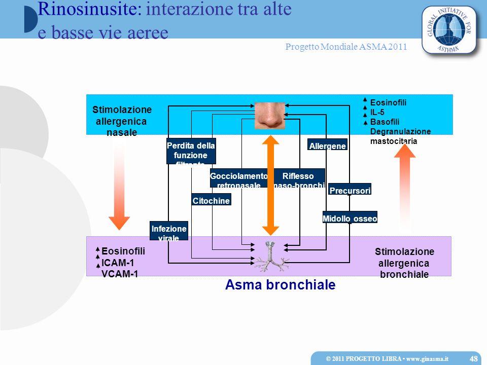 Progetto Mondiale ASMA 2011 Asma bronchiale Stimolazione allergenica bronchiale Eosinofili IL-5 Basofili Degranulazione mastocitaria Eosinofili ICAM-1