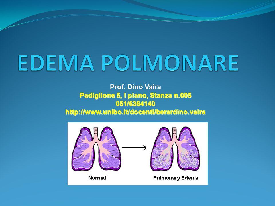 Prof. Dino Vaira Padiglione 5, I piano, Stanza n.005 051/6364140 http://www.unibo.it/docenti/berardino.vaira
