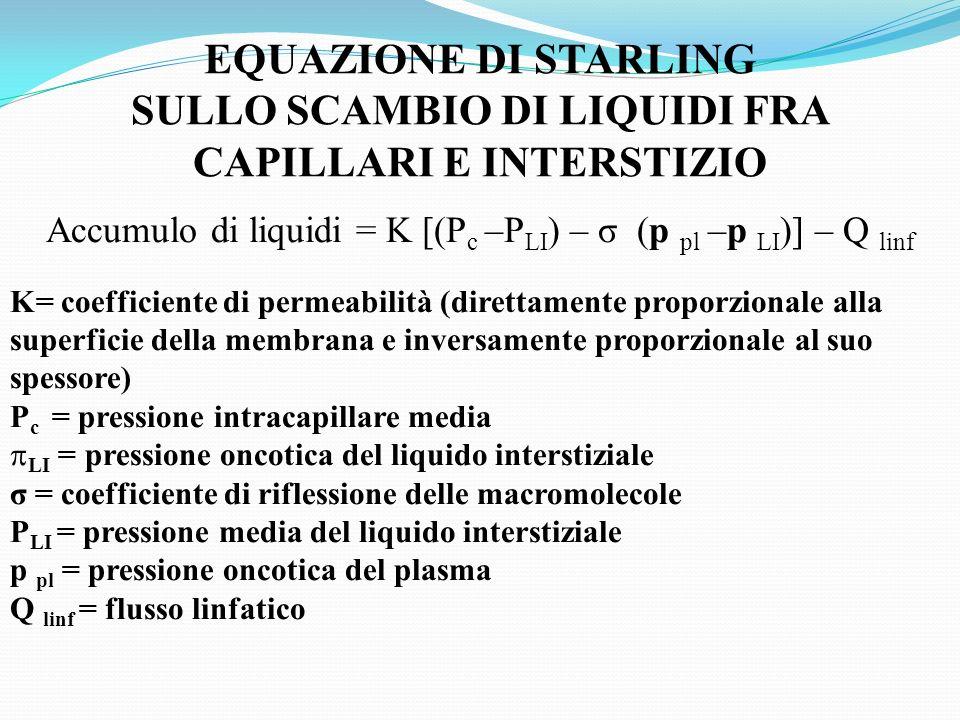 EQUAZIONE DI STARLING SULLO SCAMBIO DI LIQUIDI FRA CAPILLARI E INTERSTIZIO Accumulo di liquidi = K [(P c –P LI ) – σ (p pl –p LI )] – Q linf K= coeffi