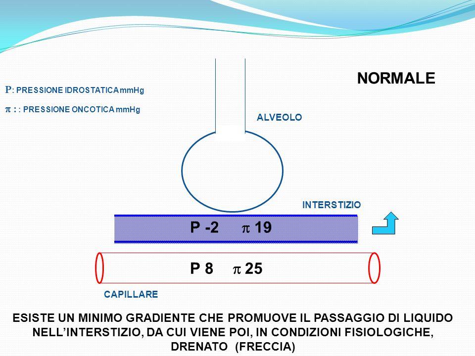 P : PRESSIONE IDROSTATICA mmHg : : PRESSIONE ONCOTICA mmHg ALVEOLO INTERSTIZIO P -2 19 P 8 25 CAPILLARE ESISTE UN MINIMO GRADIENTE CHE PROMUOVE IL PAS