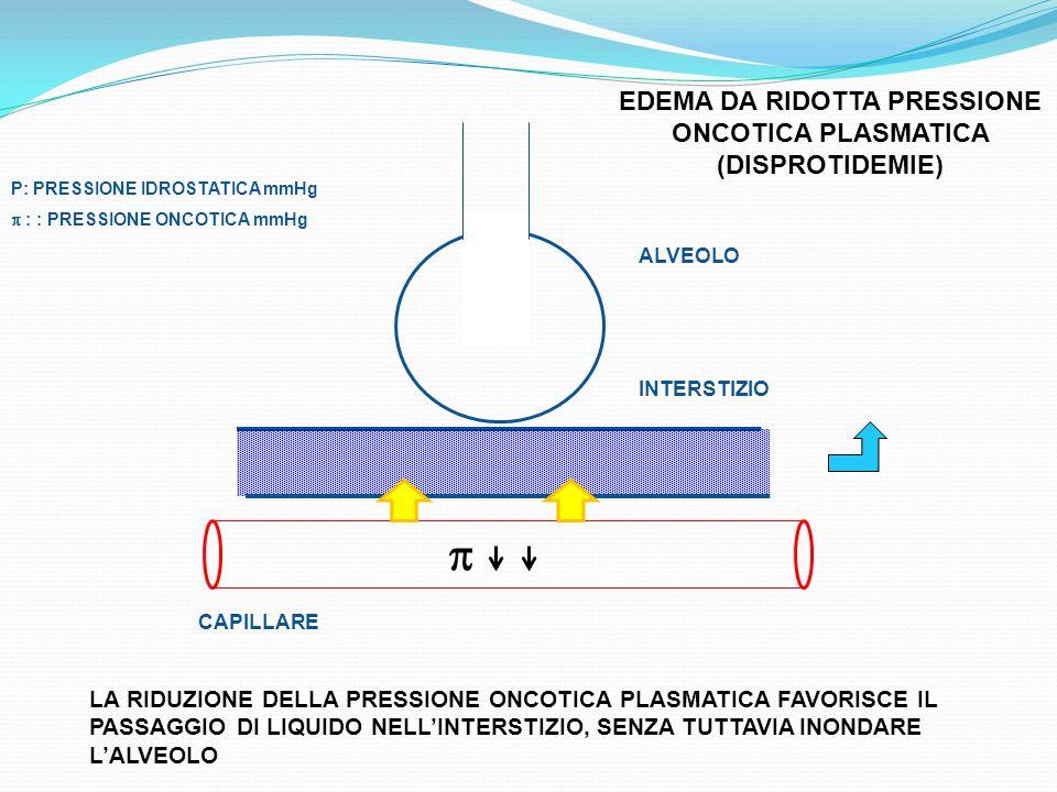 EDEMA DA RIDOTTA PRESSIONE ONCOTICA PLASMATICA (DISPROTIDEMIE) P: PRESSIONE IDROSTATICA mmHg : : PRESSIONE ONCOTICA mmHg LA RIDUZIONE DELLA PRESSIONE