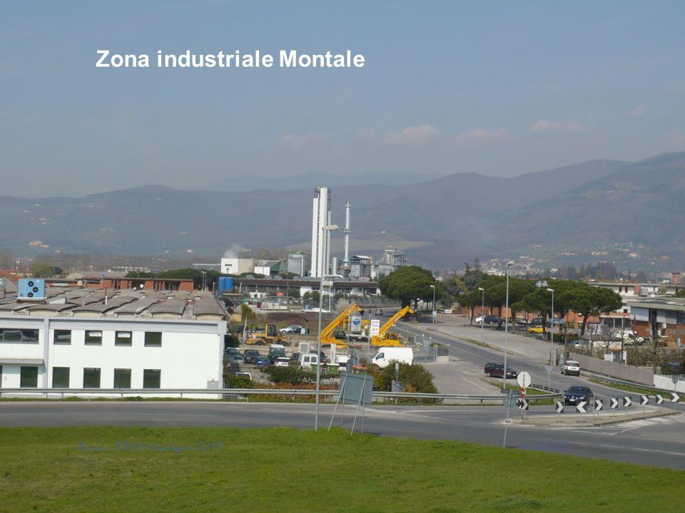 Zona industriale Montale 12/06/2013 Roma - XXIII Convegno AIVI