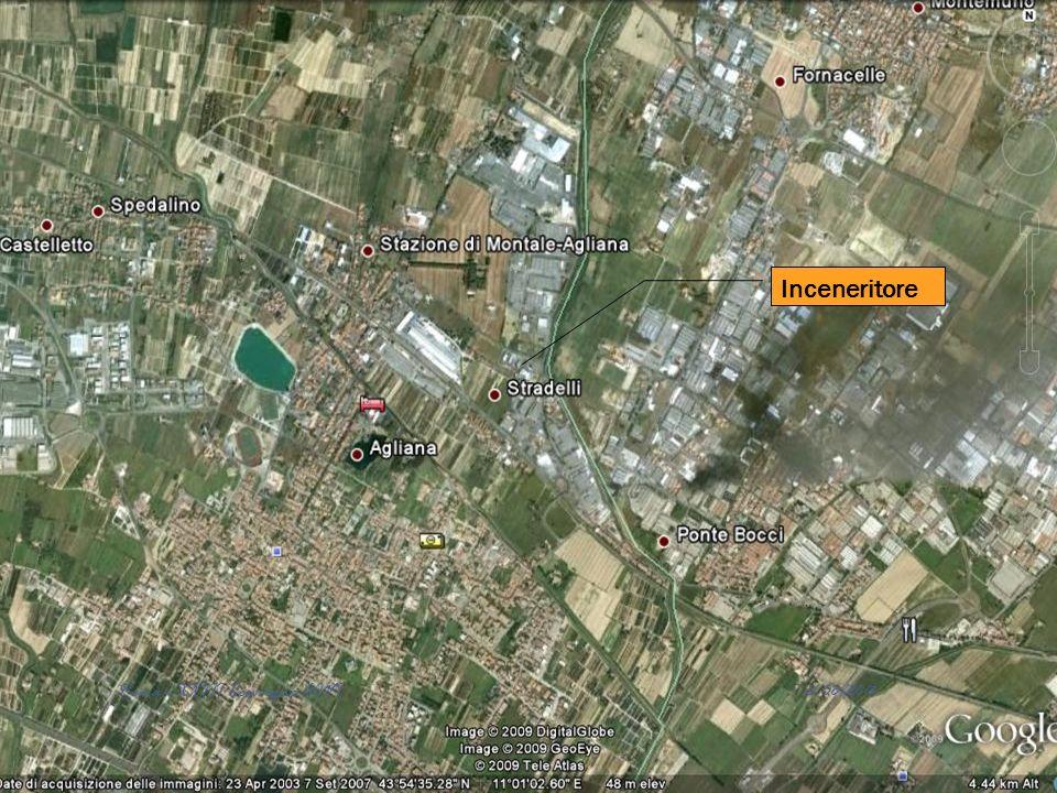 Inceneritore 12/06/2013 Roma - XXIII Convegno AIVI