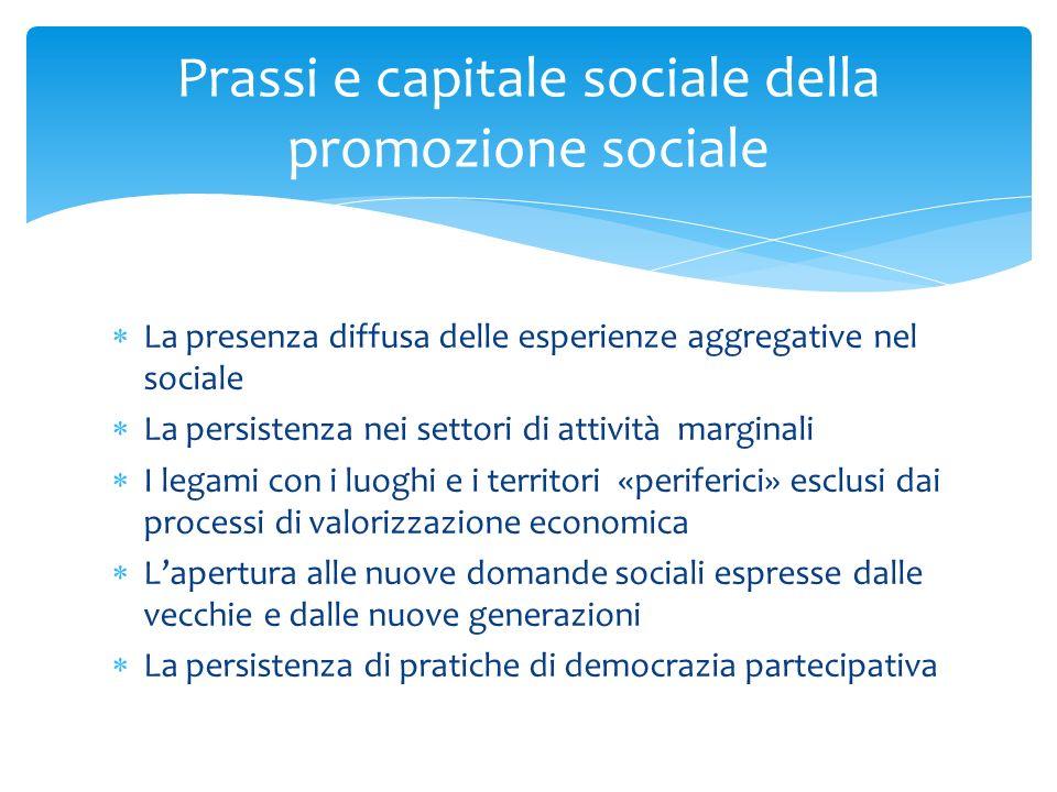 La presenza diffusa delle esperienze aggregative nel sociale La persistenza nei settori di attività marginali I legami con i luoghi e i territori «per