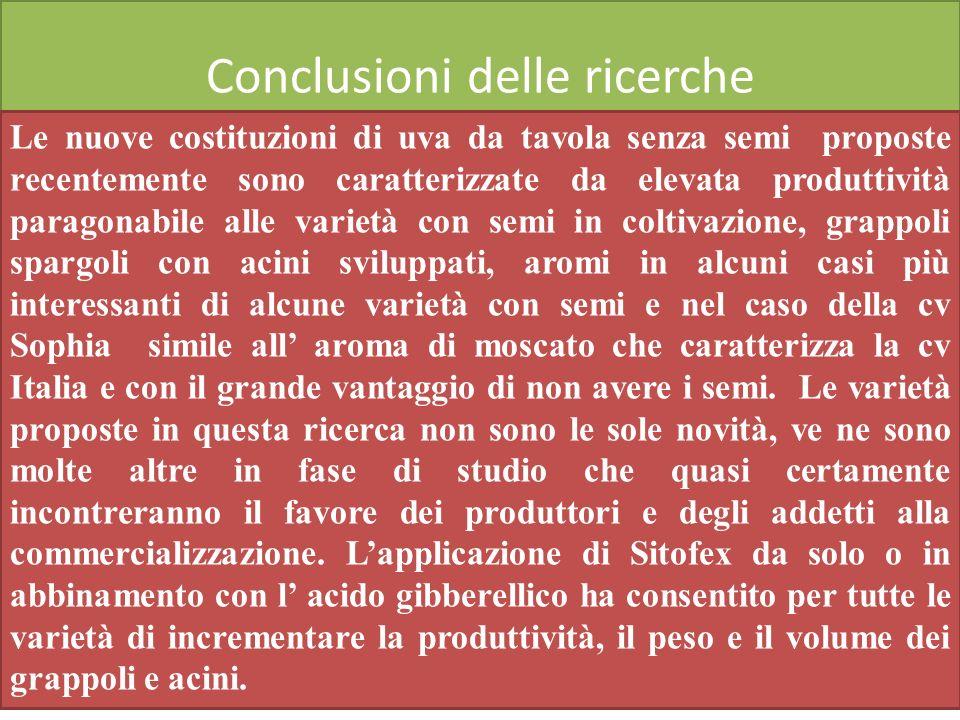 Conclusioni delle ricerche Le nuove costituzioni di uva da tavola senza semi proposte recentemente sono caratterizzate da elevata produttività paragon