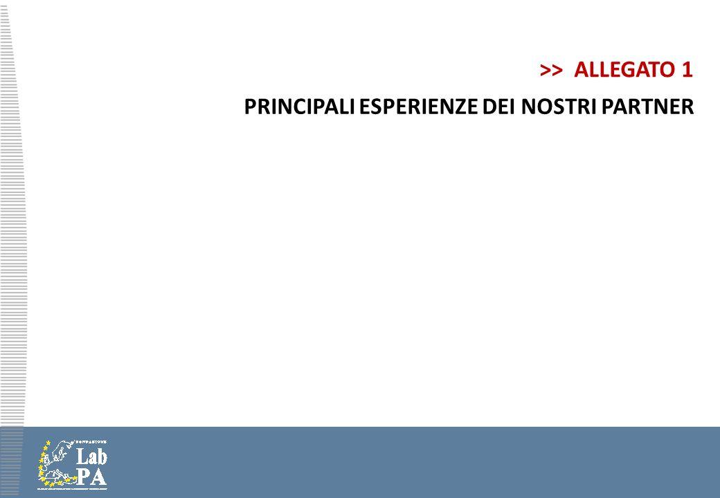 >> ALLEGATO 1 PRINCIPALI ESPERIENZE DEI NOSTRI PARTNER