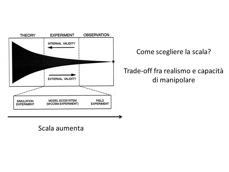Scala aumenta Trade-off fra realismo e capacità di manipolare Come scegliere la scala?