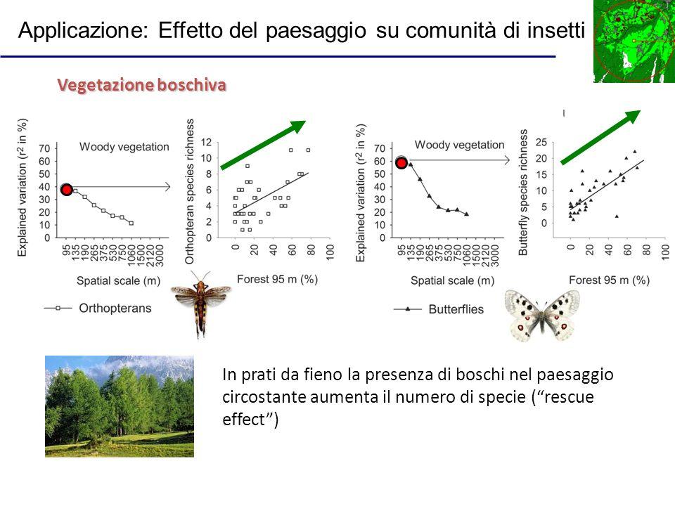 In prati da fieno la presenza di boschi nel paesaggio circostante aumenta il numero di specie (rescue effect) Vegetazione boschiva Applicazione: Effet