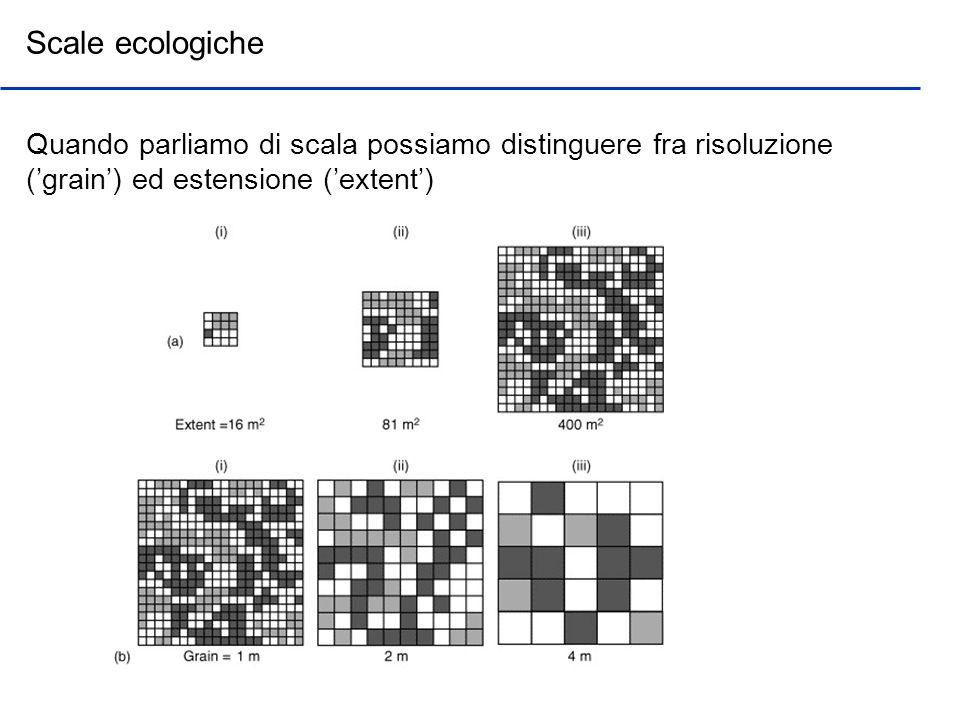 Scale di analisi del paesaggio La scelta del raggio dipende dalla mobilità dellorganismo