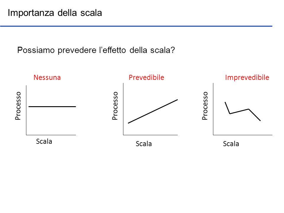Scala Processo NessunaPrevedibile Importanza della scala Scala Imprevedibile Possiamo prevedere leffetto della scala?