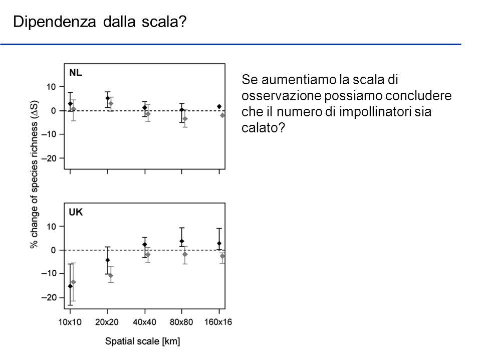 Dipendenza dalla scala? Se aumentiamo la scala di osservazione possiamo concludere che il numero di impollinatori sia calato?