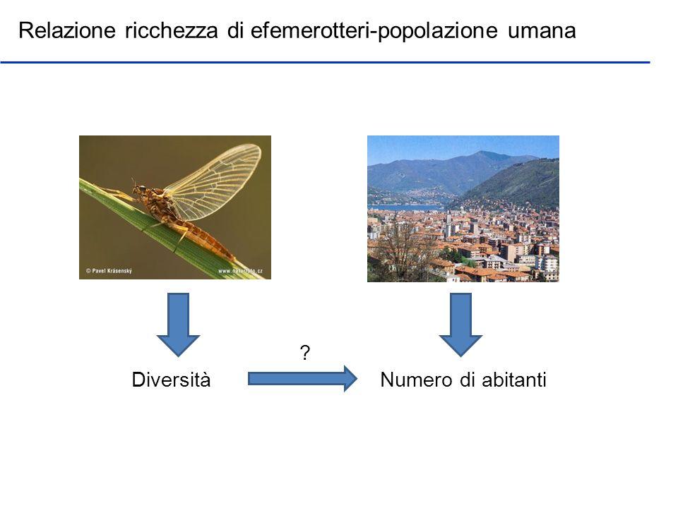 Quesiti: Come la composizione del paesaggio influenza ortotteri e lepidotteri diurni.