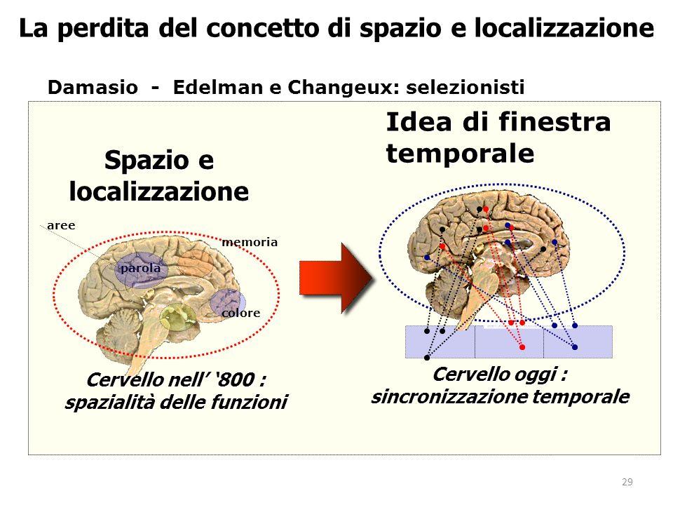 29 La perdita del concetto di spazio e localizzazione Damasio - Edelman e Changeux: selezionisti Spazio e localizzazione Cervello nell 800 : spazialit