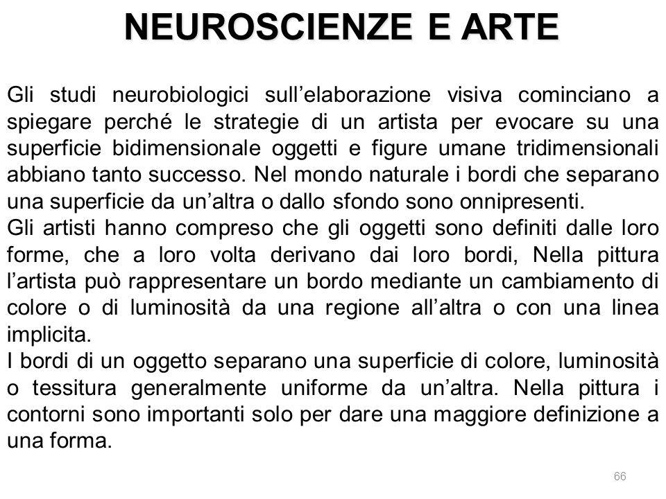66 Gli studi neurobiologici sullelaborazione visiva cominciano a spiegare perché le strategie di un artista per evocare su una superficie bidimensiona
