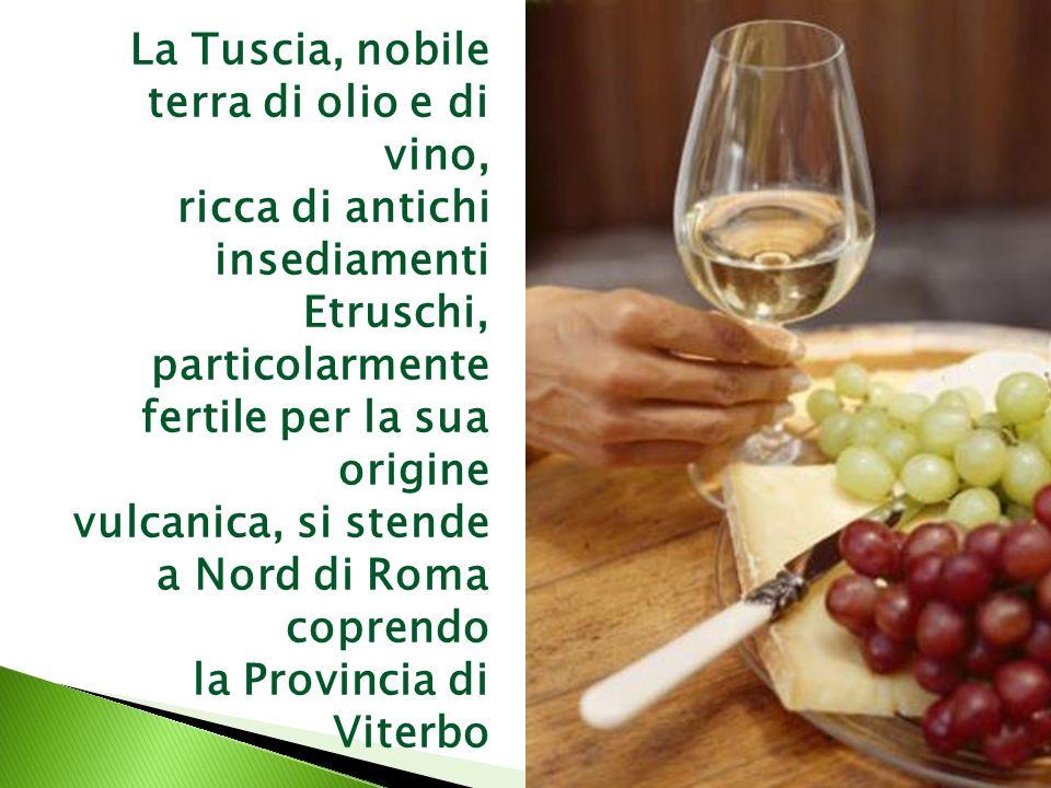 La Tuscia, nobile terra di olio e di vino, ricca di antichi insediamenti Etruschi, particolarmente fertile per la sua origine vulcanica, si stende a Nord di Roma coprendo la Provincia di Viterbo