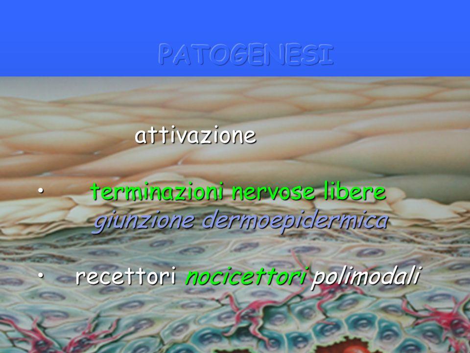 Fattori del prurito uremico Fattori del prurito uremico Xerosi Xerosi Ridotta eliminazione di prodotti della Ridotta eliminazione di prodotti della sudorazione sudorazione Proliferazione e degranulazione di Proliferazione e degranulazione di mastociti mastociti Formazione di citochine pruritogene Formazione di citochine pruritogene Pattern anomalo di innervazione Pattern anomalo di innervazione cutanea cutanea Iperparatiroidismo secondario Iperparatiroidismo secondario
